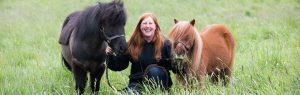 Shetlands ponies with woman