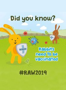 Rabbit awareness week 2019