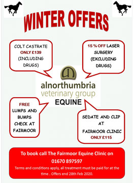 Equine Winter Offers 2019